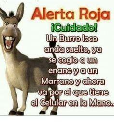 Pin on memes Funny Spanish Jokes, Mexican Funny Memes, Mexican Humor, Spanish Humor, Spanish Quotes, Funny Jokes, Funny Phrases, Love Phrases, Michaela