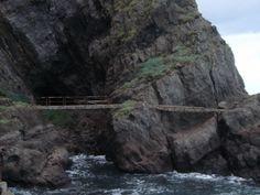 The Gobbins Path at Islandmagee