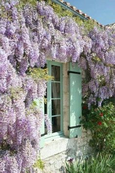 Gorgeous purple wisteria hanging over pastel green shutters on this French home's stone exterior.