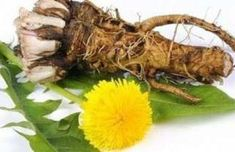 Article source: Healthy Holistic Living When faced with a cancer diagnosis, you're normally faced with the horrifying decision of treating it with extremely dangerous treatments like chemotherapy, radiation treatment, and invasive surgeries. Natural Treatments, Natural Cures, Natural Healing, Natural Medicine, Herbal Medicine, Dandelion Health Benefits, Autogenic Training, Dandelion Root Tea, Home Remedies