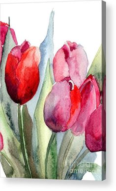 Tulips Flowers by Regina Jershova - Tulpen Dekoration Watercolor Pictures, Watercolor Cards, Watercolor Flowers, Watercolor Paintings, Watercolors, Painting Flowers, Tulip Painting, Watercolor Water, Drawing Flowers