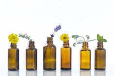 You are minutes away from creating a stunning perfume oil at home! Learn how to blend your own scents or choose from one of our 10 perfume oil recipes. Essential Oils For Colds, Essential Oils Guide, Essential Oil Perfume, Perfume Oils, Essential Oil Blends, Homemade Perfume, Perfume Recipes, Perfume Making, Tips Belleza