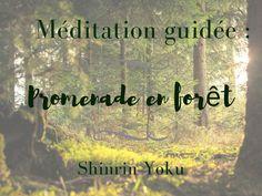 Michelle Lewin, Shinrin Yoku, Yoga Nidra, Tracy Anderson, Law Of Attraction Quotes, Meditation Music, Insomnia, Ronda Rousey, Wing Chun