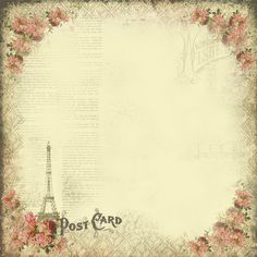 paris rose  by astrid.maclean, via Flickr
