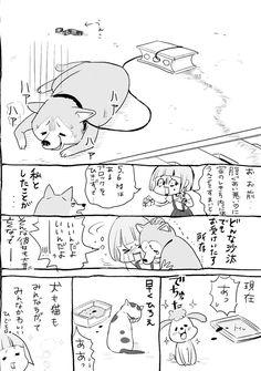 松本ひで吉*犬と猫とねこ色単行本6/13発売 (@hidekiccan) さんの漫画   103作目   ツイコミ(仮)