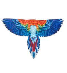 Brainy Bird Wings - Macaw | Main Photo (Cover)