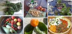 bioaktiv Essen