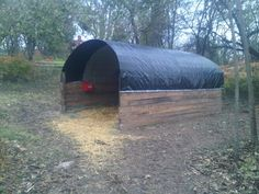 Temporary/Emergency shelter that I built in one day for the two senior horses that we have rescued. Built using recycled/upcycled materials that I had on hand. The only items that I purchased were the tarp and the zipties!