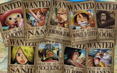 Straw Hat Wanted Poster 8y
