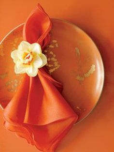 Orange napkin, orange plate, orange background.  What could be better than that..!!