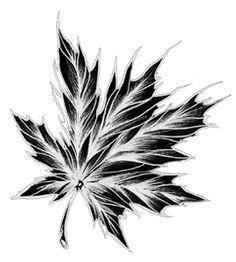 Significato del Tatuaggio delle Foglie. Scopriamo i significati delle foglie più utilizzate nei tatuaggi.   #significatotatuaggio #significatotattoo #tattoo #tatuaggi #significatofoglie #significatotrifoglio #significatoquadrifoglio #significatofogliaacero #tatuaggiofoglia #fogliatattoo #fogliaacerotattoo #quadrifogliotattoo