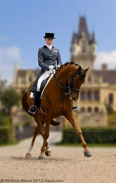 Chestnut Dressage Maria Kirillova. How perfect is that background?