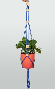 Blue Hanging Planter  Macrame Plant Hanger with by DanceOfTheSoul