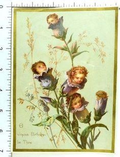 Lovely-Anthropomorphic-Babies-Flower-Buds-Mica-Oddball-Fantasy-Victorian-Card-G