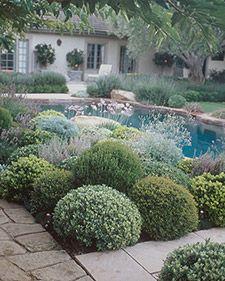 Garden Design 101 - Martha Stewart Home & Garden