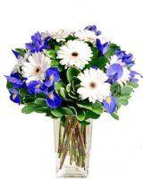 bílé gerbery a irisy Glass Vase, Floral Wreath, Wreaths, Plants, Home Decor, Floral Crown, Decoration Home, Door Wreaths, Room Decor