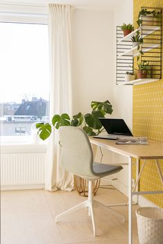 Study Rooms, Interior Inspiration, Home Office, Dining Chairs, Living Room, Wallpaper, House, Furniture, Graham Brown