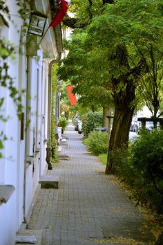 Zabytkowa ulica zielonego Żoliborza - Wieniawskiego