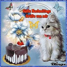 Cats And Kittens, Butterfly, Wallpaper, Birthday, Funny, Reiki, Love Pictures, Love Sms, Good Afternoon