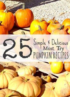 25 Must Try Pumpkin Recipes!  Crockpot Pumpkin Bread, Pumpkin Bites, Pumpkin Cookies, Pumpkin Pudding and MORE!!