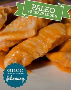 Paleo February 2013 Freezer Meals