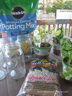 How to Plant Herbs In Mason Jars – The Contractor Chronicles - Modern Mason Jar Herbs, Mason Jars, Garden Plants, Indoor Plants, Indoor Herbs, Container Gardening, Gardening Tips, Indoor Gardening, Outdoor Projects
