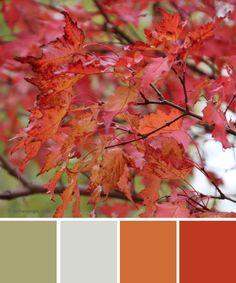 farbinspirationen-Herbstfarben-Orange-rot http://www.farbenergie.com/2015/11/farbinspirationen-herbstfarben-in-orange-rot/