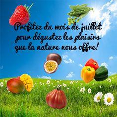 Découvrez les fruits et légumes du mois de juillet!