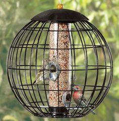 /l-cool bird feeder
