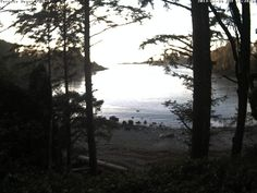Terrace Beach Resort - Ucluelet, BC