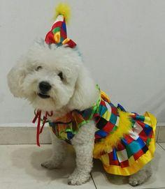 Dinosaur Stuffed Animal, Toys, Animals, Dog Coats, Animal Costumes, Pets, Activity Toys, Animales, Animaux
