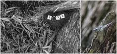engagement ring, nature, photography, Anneli Young, the Milk House, Hankey, Eastern Cape Wedding photographer