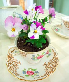 """Vintage Tea Cup Planters: a Great Fundraising Tool - Garden Therapy It would be fun to make a """"teaparty"""" with 2-3 cups with flowers - and perhaps an old teapot on a small table in the garden!"""