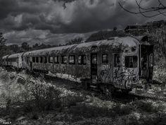 Tren Abandonado!! Abril 2014
