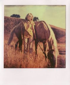 taken by Joep Gottemaker on PX 70 Vintage Photography, Film Photography, Nature Photography, Vintage Polaroid, Vintage Cameras, 60s Films, Polaroid Instant Camera, Photo Pin, Horse Quotes