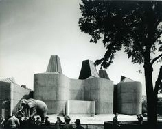 Architects, Casson Conder Partnership   The Elephant House   Elephant in front of pavillion with tree   Photo by Henk Snoek (1965)