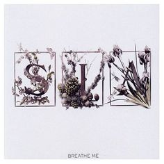 """""""Breathe Me"""" by Sia...Before Flo Rida and Pitbull, Sia sounded more like this! I don't know many of her songs but her voice is great!"""
