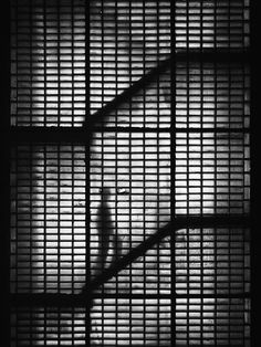 In A Staircase: By Ralph Graef, more artworks http://www.artlimited.net/graef-fotografie #Photography #Digital #Construction #Interior #Art