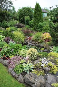 I love all the stones and boulders in this garden.