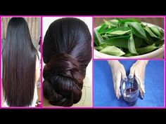 Grow hair 1 inch in 5 days | Curry Leaf herbal oil | Faster Hair Growth | Reverse Gray hair - YouTube