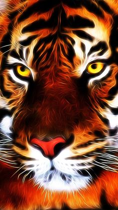 98b281f848b0 45 Best tigers images