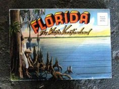 Florida | Flickr - Photo Sharing!