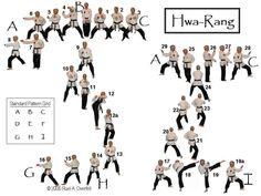 Hwa Rang Do | Hwa- Rang - 29 Moves