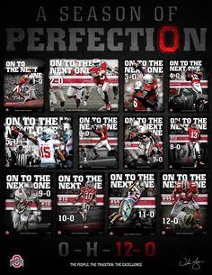 2012 Buckeyes: A season of Perfection! Oregon Ducks Football, Ohio State Football, Ohio State University, Ohio State Buckeyes, College Football, American Football, Football University, Oklahoma Sooners, Football Team