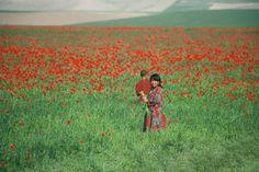 Spring in Afghanistan.