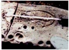 http://karapaia.livedoor.biz/archives/52102488.html