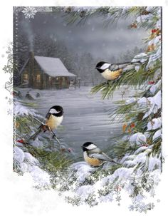 Buy Winter Bird - Birds Paint By Number kit or check our new modern collections for adults paint by numbers. Relax and enjoy your canvas painting Christmas Bird, Christmas Scenes, Vintage Christmas Cards, Christmas Pictures, Vintage Cards, Winter Christmas, Merry Christmas, Christmas 2019, Christmas Desktop