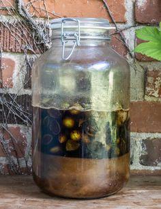 Green Walnut Honey Half Gallon Mason Jars, Walnut Uses, Conifer Trees, Black Licorice, Mason Jar Lamp, Places To Eat, Honey, Syrup, Green