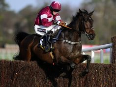 Trifolium bolts up under Bryan Cooper in the Arkle Novice Chase at Leopardstown