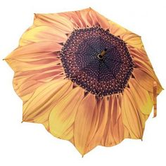 A stunning sunflower design emblazoned across this high quality ladies umbrella. This sunflower umbrella is auto open with wooden handle & fibreglass ribs. Ladies Umbrella, Umbrella Art, Folding Umbrella, Under My Umbrella, Umbrella Painting, Umbrella Wedding, Umbrellas Parasols, Kawaii, Yellow And Brown